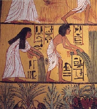 Mural of Egyptian peasants harvesting papyrus